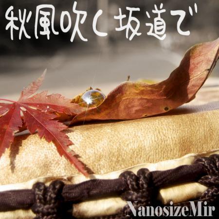 akikaze_lsize.jpg