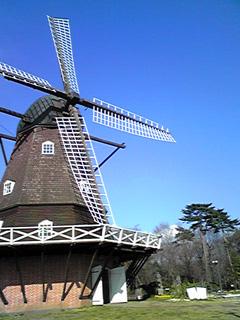 2009.3.26.風車 sh0109 のコピー