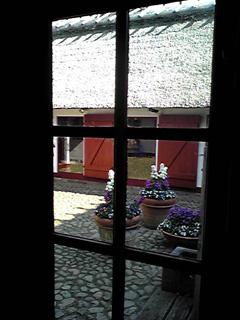 2009.3.26.室内窓から中庭をSH0109 のコピー