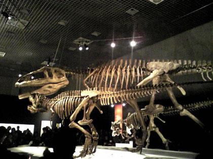 2009.3.420x マプサウルス親子SH0109 のコピー