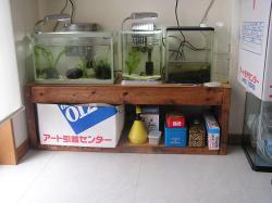 新居水槽2