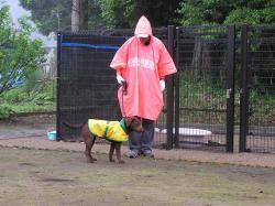 雨のお散歩2