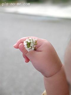 お花を持たせてもらいました