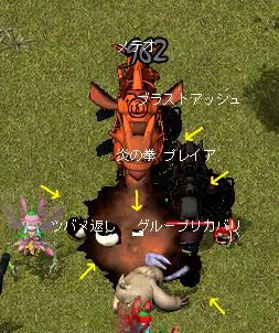 20090328_08.jpg