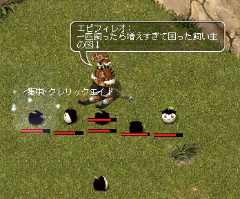 20090328_10.jpg