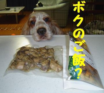 ぼくのご飯でしょ?