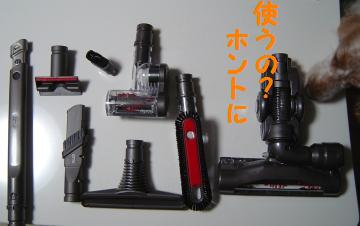 DSC07155.jpg