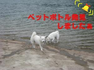 20070819222522.jpg