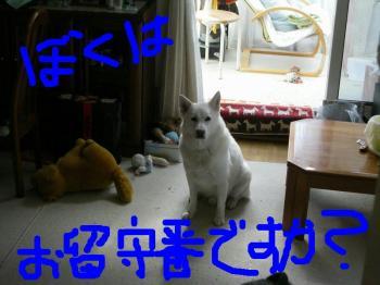 20071019213702.jpg