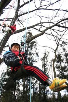 treeing.jpg