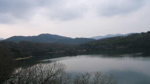 2009_0119画像0050
