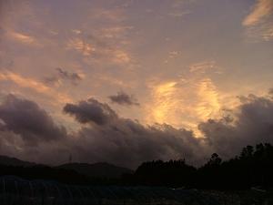 台風の中で一瞬