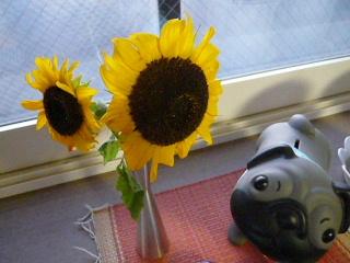 2009_0910hima0008b.jpg