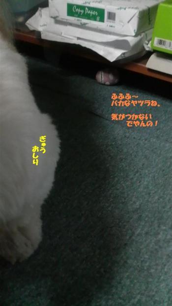 2008091321280000_convert_20080929212956.jpg