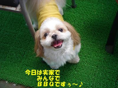 DSC07588繝シ・祇convert_20090607222828