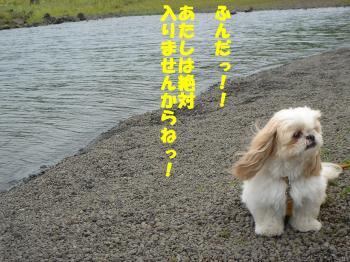 DSC07748繝シ・祇convert_20090729235004