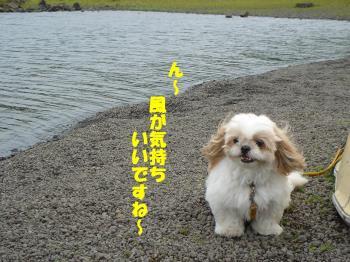 DSC07749繝シ・祇convert_20090729235026