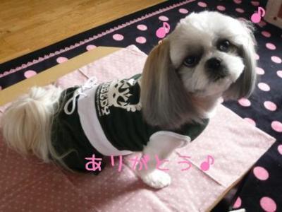 chi-chan_convert_20090226225258.jpg