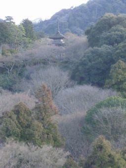 清水寺から見えた塔