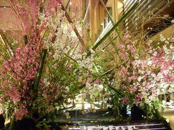 東京ミッドタウンblog