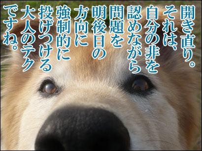 YUKI10_D.jpg
