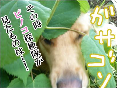YUKI11_F.jpg