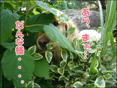 YUKI11_G.jpg