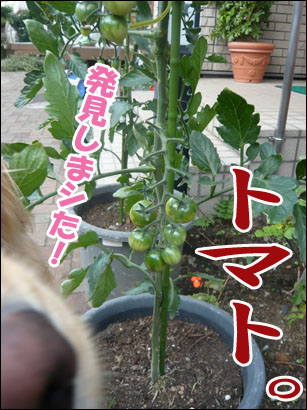 YUKI11_H.jpg