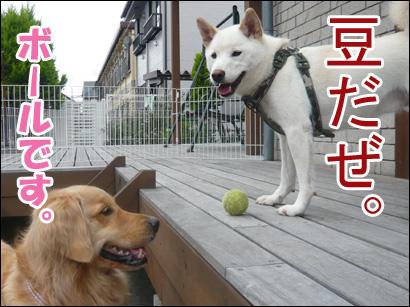 YUKI12_A.jpg