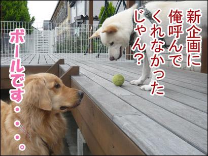 YUKI12_B.jpg