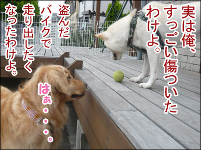 YUKI12_C.jpg