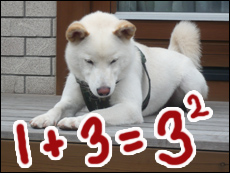 YUKI12_G.jpg