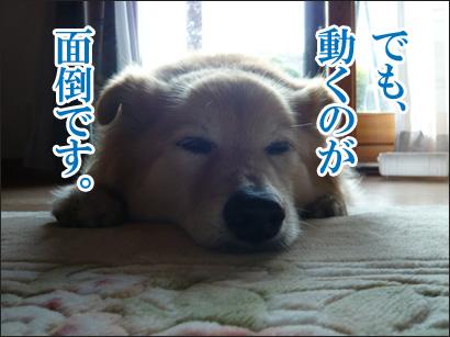 YUKI13_F.jpg