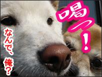 YUKI13_I.jpg