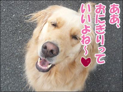 YUKI14_A.jpg