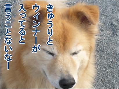 YUKI14_B.jpg