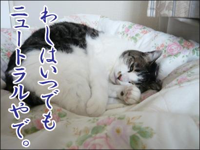 YUKI14_C.jpg