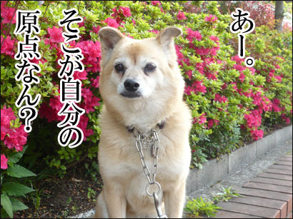 YUKI14_E.jpg