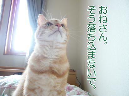 YUKI16_A.jpg