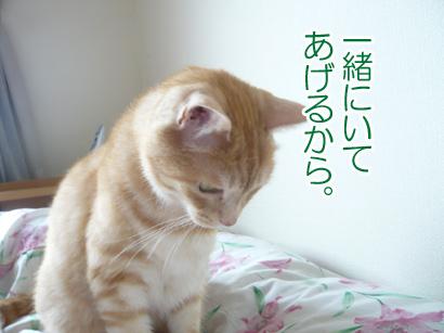 YUKI16_B.jpg