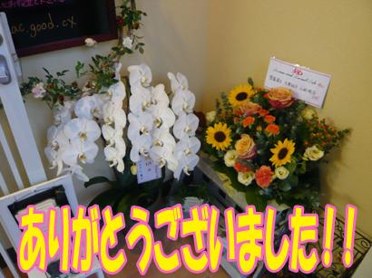 YUKI18_H.jpg