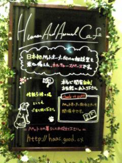 YUKI19_B.jpg