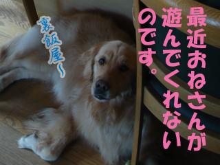 YUKI20_A.jpg