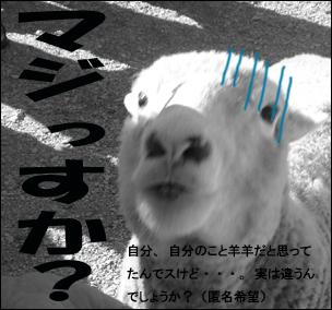 YUKI2_D.jpg