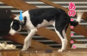 YUKI2_E.jpg
