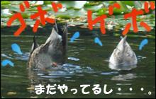 YUKI2_L.jpg