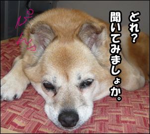 YUKI3_A.jpg