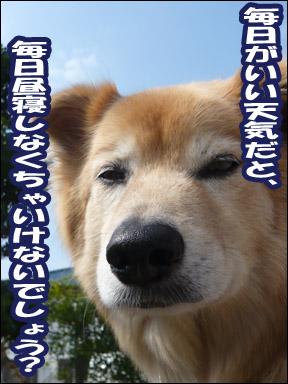 YUKI3_D.jpg
