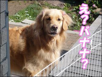 YUKI4_E.jpg