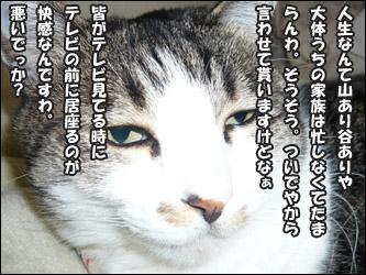 YUKI4_F.jpg